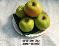 Apfelsortenschau_Seestsermueher-Zitronenapfel